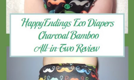 HappyEndings Eco Diapers Charcoal Bamboo All-in-Two Review