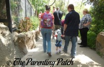 Toddler Leashes: Keeping Young Children Safe