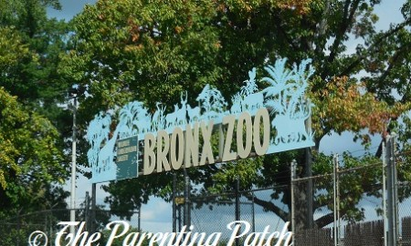 Bronx Zoo Gates