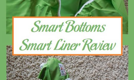 Smart Bottoms Smart Liner Review