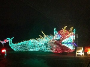 Christmas Light Chinese Dragon