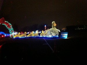 Christmas Light Ducks