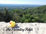 The Duck and New Jersey Scenic Overlook