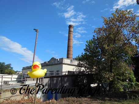 The Duck and the Dobbs Ferry Smoke Stack