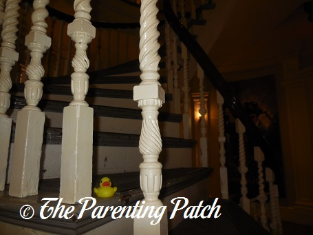 The Duck and the Old State House Staircase