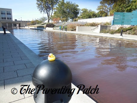 The Duck and the Indiana Central Canal
