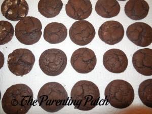 Mint Chocolate Fudge Cake Crinkles Ready to Eat
