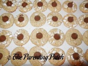 Butter Pecan Blossom Cookies