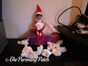The Elf and the Tissues