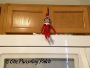 The Elf and the Microwave