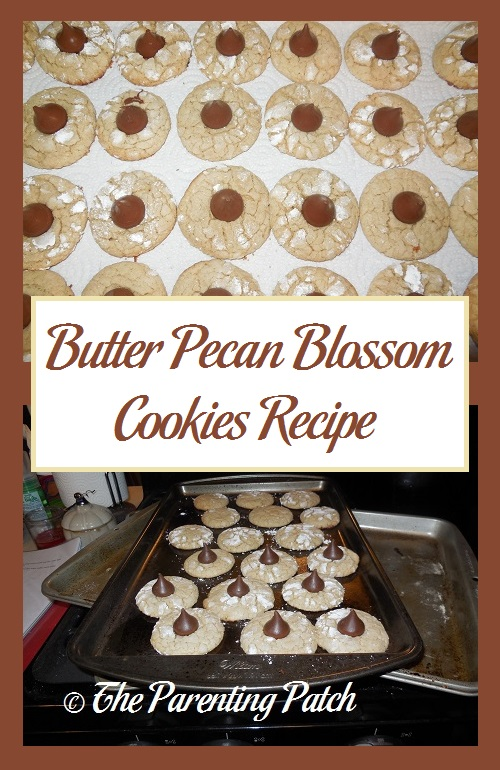Butter Pecan Blossom Cookies Recipe