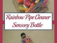 Rainbow Pipe Cleaner Sensory Bottle