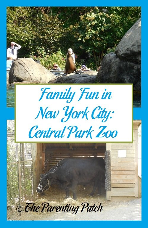 Family Fun in New York City: Central Park Zoo