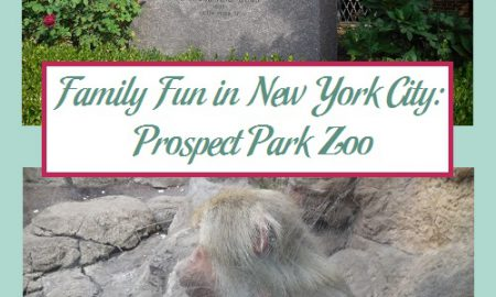 Family Fun in New York City: Prospect Park Zoo
