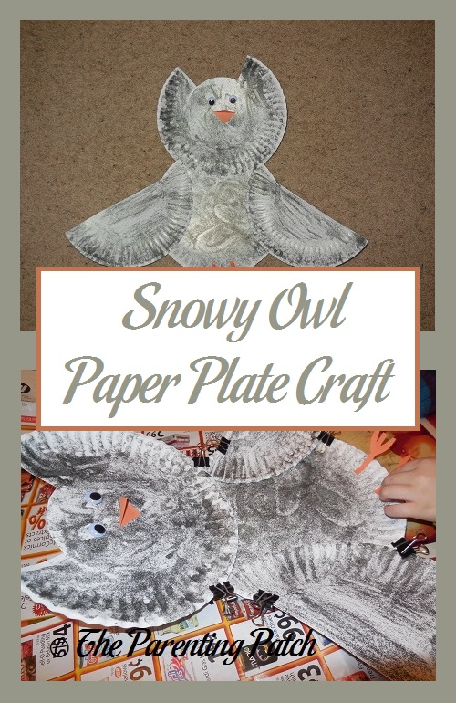 & Snowy Owl Paper Plate Craft | Parenting Patch
