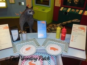 Feasts for Beasts at Long Island Children's Museum