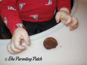 Toddler Eating Hidden Garden Ginger Snaps Cookies