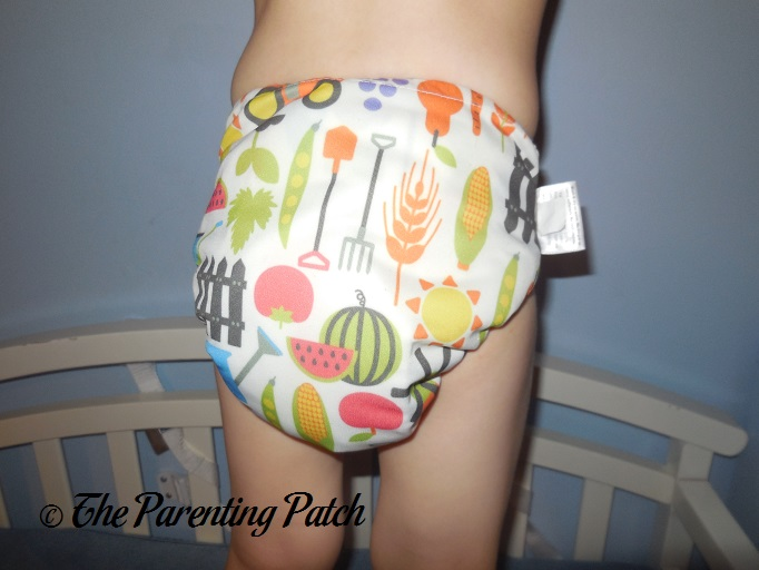 Blueberry Side Snap Simplex All In One Cloth Diaper Review