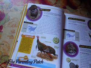 Ultimate Explorer Field Guide: Birds (National Geographic Kids Ultimate Explorers Field Guide) 2