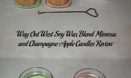 Way Out West Soy Wax Blend Mimosa and Champagne Apple Candles Review