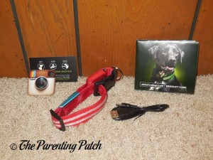 Unpacking the Shine for Dogs LED Dog Collar