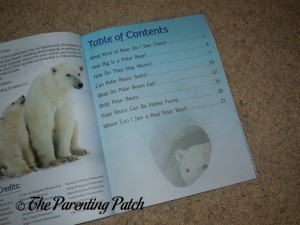 Inside Pages of A Kid's Guide to Polar Bears 1