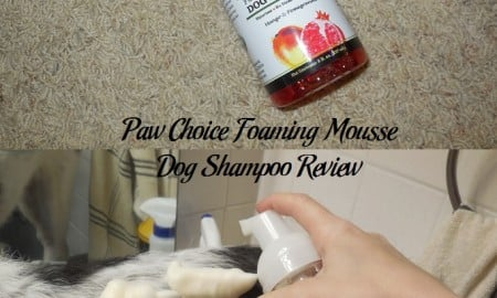 Paw Choice Foaming Mousse Dog Shampoo Review