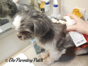 Pumping the Paw Choice Foaming Mousse Dog Shampoo on Espen