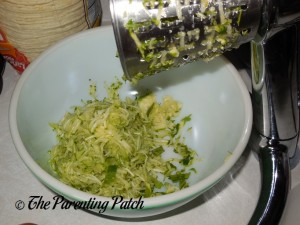 Shredding the Zucchini Squash