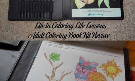 Life in Coloring Life Lessons Adult Coloring Book Kit Review