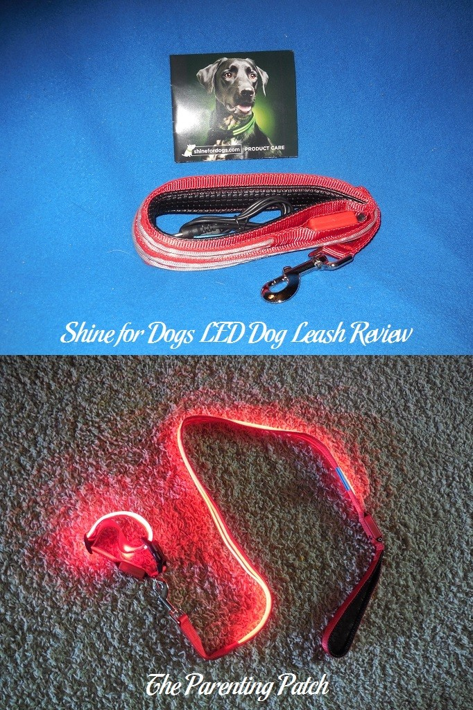 Shine for Dogs LED Dog Leash Review