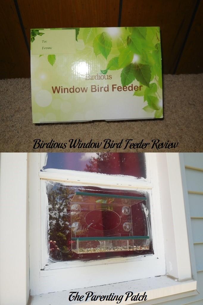 Birdious Window Bird Feeder Review