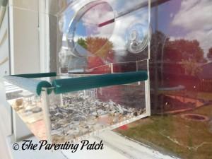 Crack in Birdious Window Bird Feeder