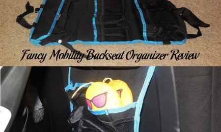Fancy Mobility Backseat Organizer Review