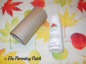 Toilet Paper Tube and White Acrylic Paint