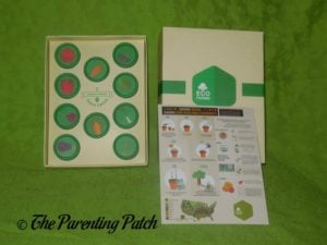 EcoFarms Organic Vegetable Heirloom Seeds Kit with Box
