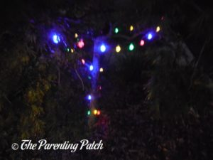 LTROP Multi-Color Globe Outdoor Solar LED Lights on Tree 1