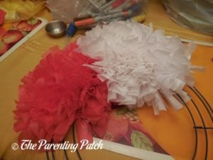 Red and White Sections of Red, White, and Blue Wreath Craft