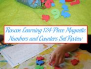 Roscoe Learning 124-Piece Magnetic Numbers and Counters Set Review