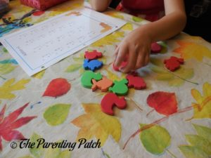 Using the Roscoe Learning 124-Piece Magnetic Numbers and Counters Set 2