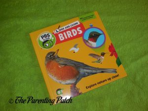 Cover of Look and Learn Birds Book
