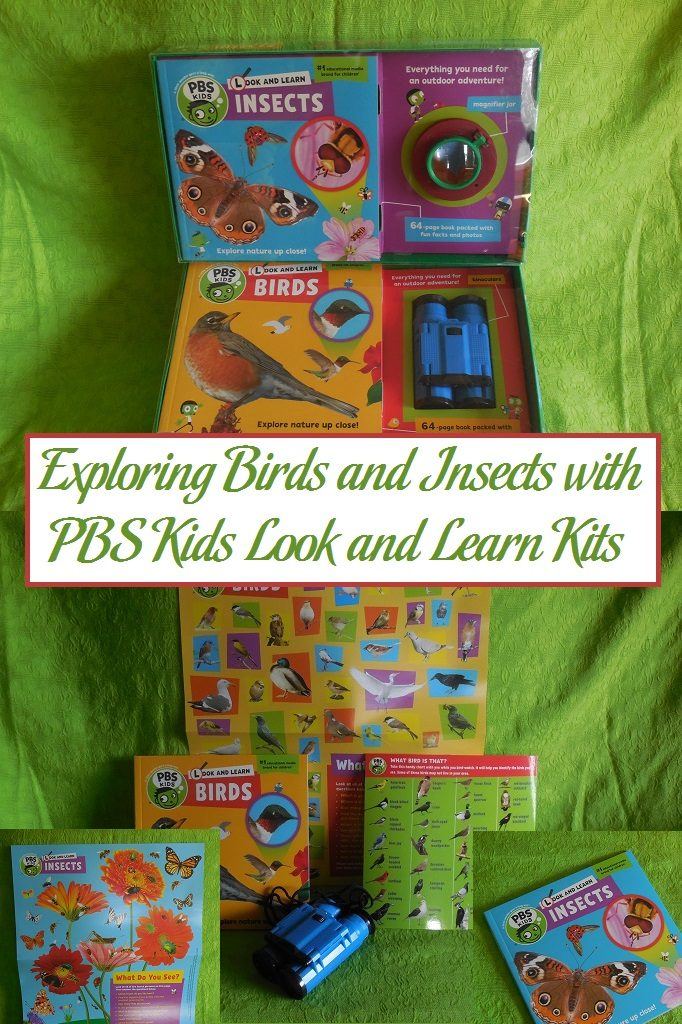 Exploring Birds and Insects with PBS Kids Look and Learn Kits