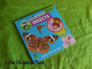 Cover of Look and Learn Insects Book