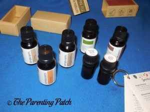 Oil Blends from Simply Earth Essential Oil Box