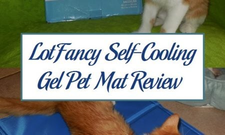 LotFancy Self-Cooling Gel Pet Mat Review