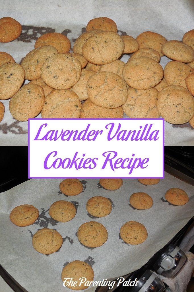 Lavender Vanilla Cookies Recipe