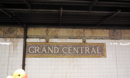 The Duck and the Grand Central-42nd Street (New York City Subway)