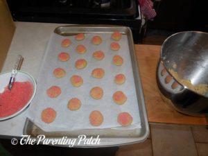 Unbaked Gluten-Free Sugar Cookies