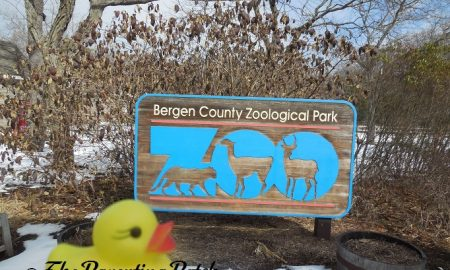 The Duck and the Bergen County Zoological Park