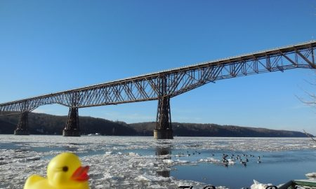 The Duck and the Walkway Over the Hudson
